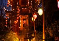 Lanternes  560