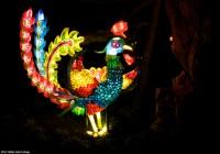 Lanternes  571