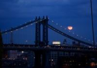 New York 2011  502