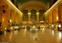 New York 2011  503